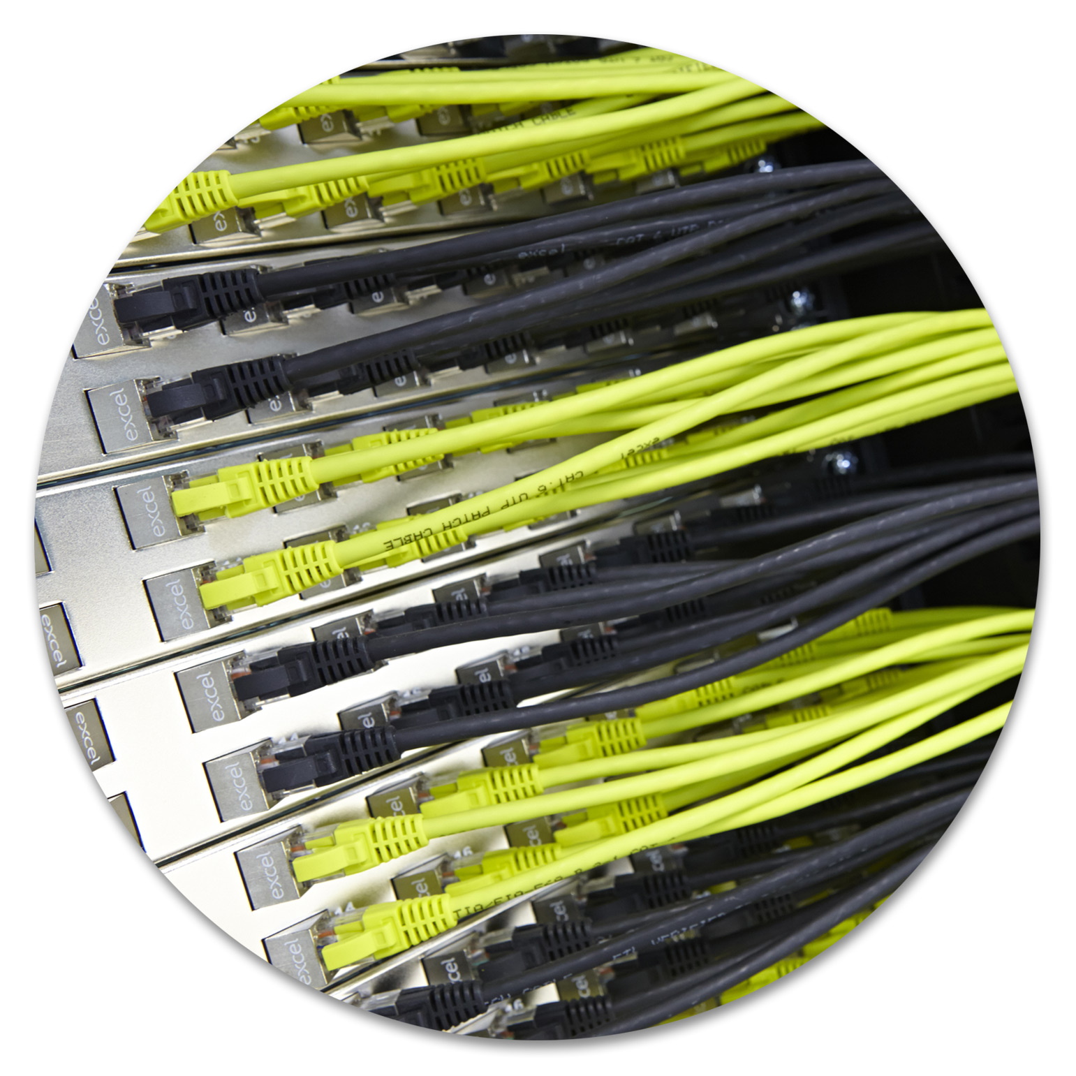 Green and Black Excel Patch Leads